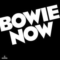David Bowie (Дэвид Боуи): Bowie Now (RSD2018)