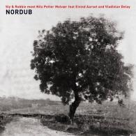 Sly & Robbie (Слай И Робби): Nordub