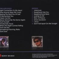 Bob Dylan (Боб Дилан): Empire Burlesque / Infidels