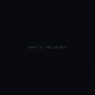 Bring Me The Horizon (Бринг Ми Зе Хоризон): That's The Spirit