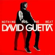 David Guetta (Дэвид Гетта): Nothing But The Beat