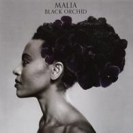 Malia (Малия): Black Orchid
