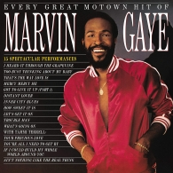 Marvin Gaye (Марвин Гэй): Every Great Motown Hit Of Marvin Gaye: 15 Spectacular Performances
