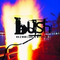 Bush: Razorblade Suitcase