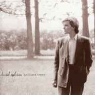 David Sylvian (Дэвид Силвиан): Brilliant Trees