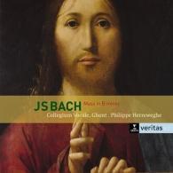 Philippe Herreweghe (Филипп Херревеге): Mass In B Minor