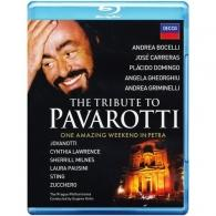 Luciano Pavarotti (Лучано Паваротти): Petra Salutes - Pavarotti Memorial Concert