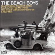 The Beach Boys: Icon