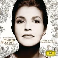 Mozart: Piano Trios K.548,542,502