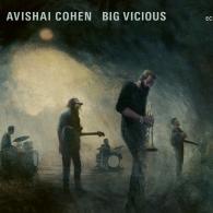 Avishai Cohen (Авишай Коэн): Avishai Cohen Big Vicious