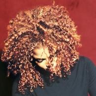 Janet Jackson (Джанет Джексон): The Velvet Rope