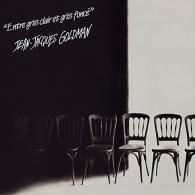 Jean-Jacques Goldman: Entre Gris Clair Et Gris Fonce