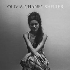 Olivia Chaney (Оливия Чейни): Shelter