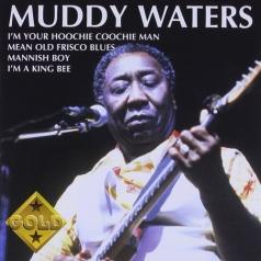Muddy Waters (Мадди Уотерс): Muddy Waters