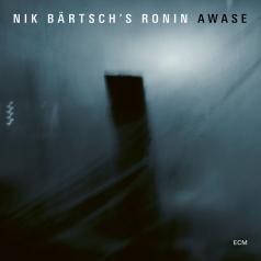 Ronin Bärtsch'S Nik: Awase