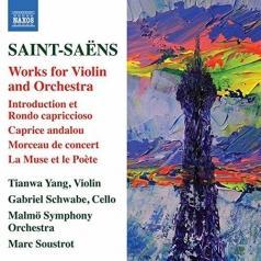 Malmö Symphony Orchestra (Симфонический Оркестр Мальмё): Works For Violin And Orchestra