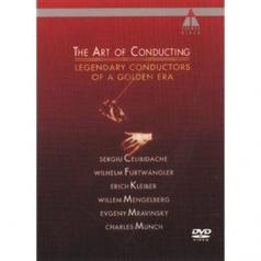 SergiuCelibidache: Art Of Conducting 2
