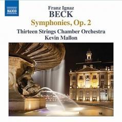 Thirteen Strings Chamber Orchestra (Камерный Оркестр 13 струн): Symphonies, Op. 2