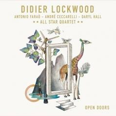 Didier Lockwood (Дидье Локвуд): Open Doors