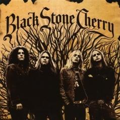 Black Stone Cherry (Блэк Стоун Черри): Black Stone Cherry