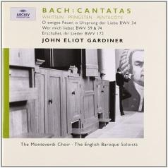 John Eliot Gardiner (Джон Элиот Гардинер): Bach:Whitsun Cantatas