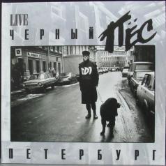 ДДТ: Черный пёс Петербург