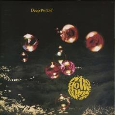 Deep Purple (Дип Перпл): Who Do We Think We Are