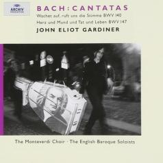 John Eliot Gardiner (Джон Элиот Гардинер): Bach: Cantatas