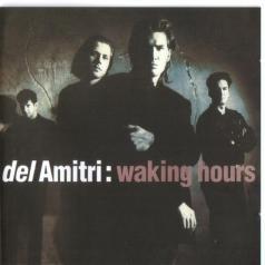 Del Amitri: Waking Hours