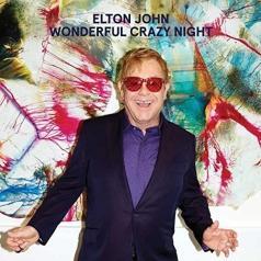 Elton John (Элтон Джон): Wonderful Crazy Night