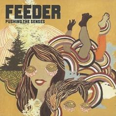 Feeder: Pushing The Senses