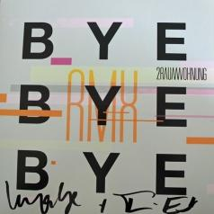 2raumwohnung: Bye Bye Bye