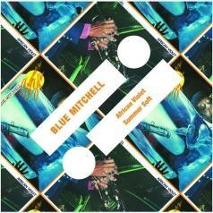 Blue Mitchell (Блю Митчелл): African Violet/Summer Soft