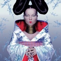 Björk (Бьорк): Homogenic