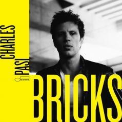 Charles Pasi: Bricks