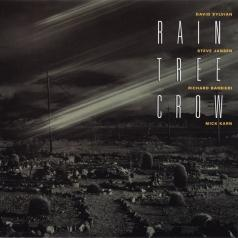 Rain Tree Crow: Rain Tree Crow