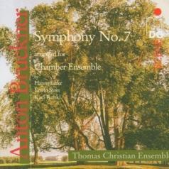 Thomas Christian Ensemble (Томас Кристиан Ансамбль): Symphony No. 7 Arr. For Chamber Ensemble