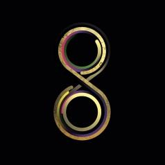 Subsonica (Субсоника): 8