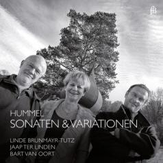 Jaap ter Linden (Яап Тер Линден): Hummel: Sonatas & Variations