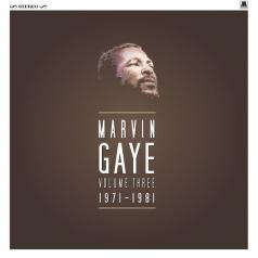 Marvin Gaye (Марвин Гэй): Marvin Gaye 1971 - 1981