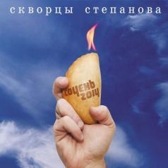 Скворцы  Степанова: Сочень 2014