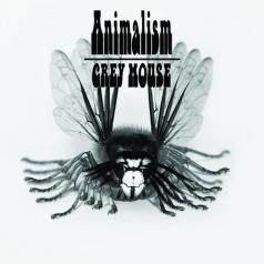 Grey Mouse (Грей Маус): Animalism
