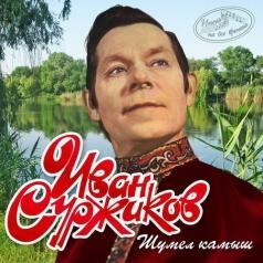 Иван Суржиков: Шумел Камыш (Имена На Все Времена)