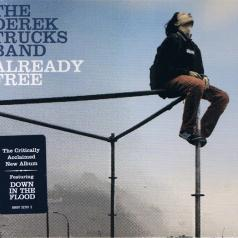 The Derek Trucks Band (Дерек Тракс Бэнд): Already Free
