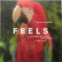Calvin Harris (Келвин Харрис): Feels