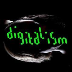 Digitalism (Диджитализм): Idealism