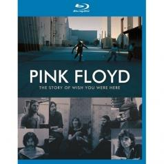 Pink Floyd: The Story Of Wish You Were Here
