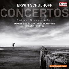 Deutsches Symphonie-Orchester (Немецкий симфонический оркестр Берлина): Schulhoff: Concertos
