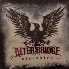 Alter Bridge (Алтер Бридге): Blackbird