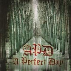 A Perfect Day (А перфект дей): A Perfect Day